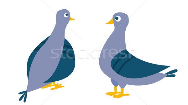 Dove Vector. Bird Pigeon. Isolated Cartoon Illustration Stock photo © pikepicture