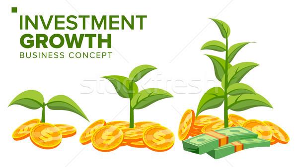 Negócio crescimento vetor planta dinheiro moedas de ouro Foto stock © pikepicture