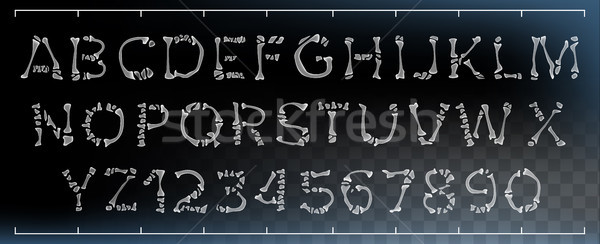 Bone Font Vector. Made Out Of Transparent Bones. Monster Horrible Font. Capitals Letters And Numbers Stock photo © pikepicture
