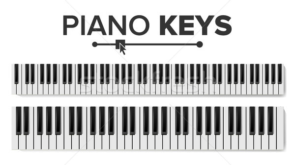 Piano Keyboards Vector. Isolated Illustration. Top View Keyboard Pad Stock photo © pikepicture