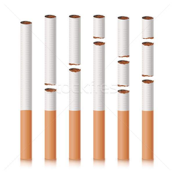 Broken Cigarettes Set Vector. Smoking Kills. Quit Smoking Concept. World No Tobacco Day. Realistic C Stock photo © pikepicture