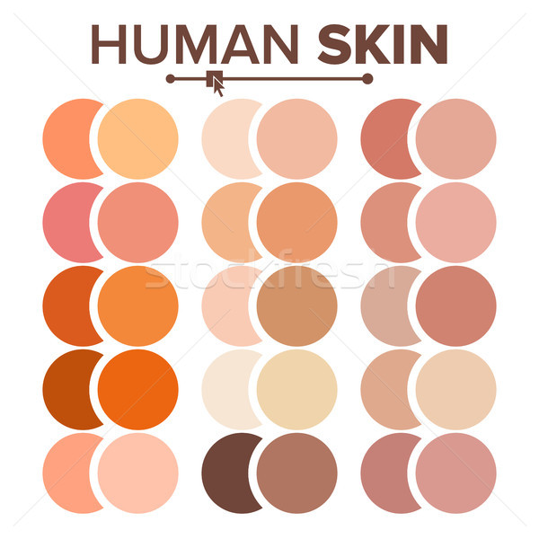 Skin Human Vector. Various Body Tones Chart. Realistic Texture Palette. Illustration Stock photo © pikepicture