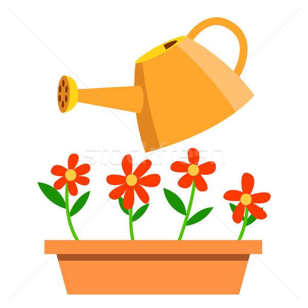 Sulama çiçekler vektör yalıtılmış karikatür örnek Stok fotoğraf © pikepicture