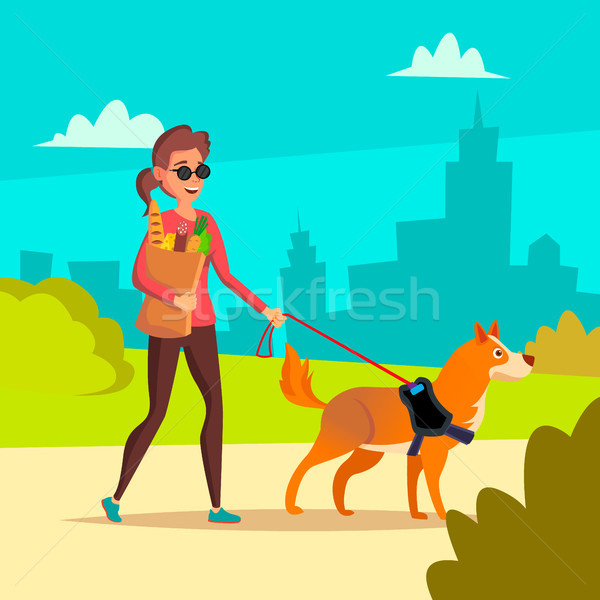 Blind Woman Vector. Young Person With Pet Dog Helping Companion. Disability Socialization Concept. B Stock photo © pikepicture