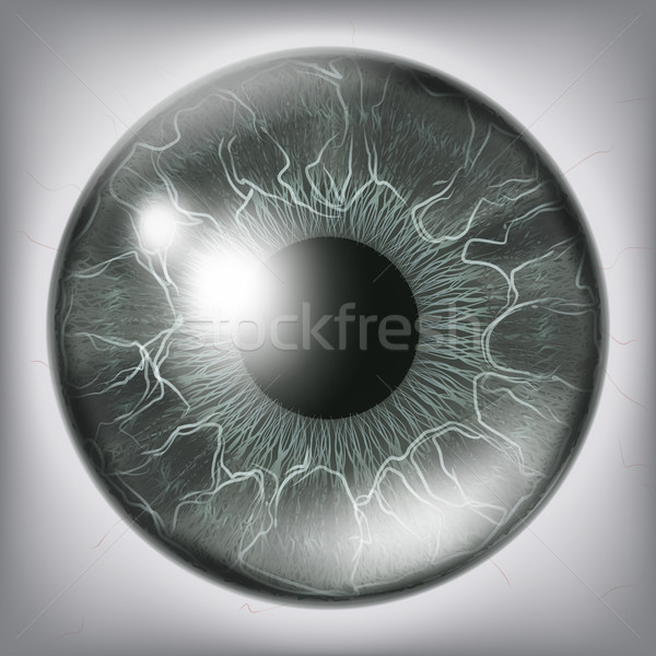 Human Eye Iiris Close Up Vector. Healthy Medical Concept Illustration Stock photo © pikepicture