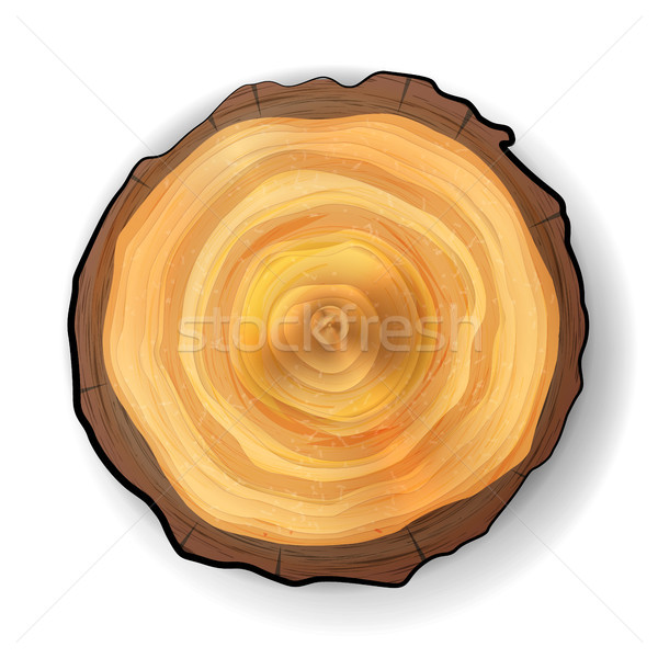 Stock photo: Cross Section Tree Wooden Stump Vector