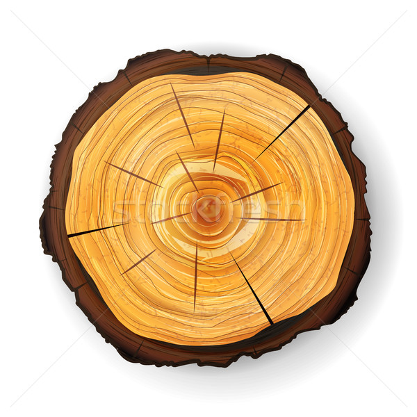 Stock photo: Cross Section Tree Wooden Stump Vector. Round Cut With Annual Rings