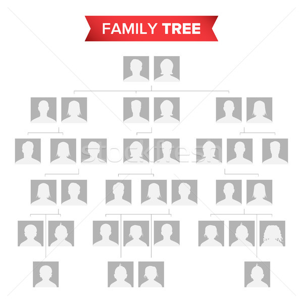 Genealogical Tree Blank Vector. Family History Tree With Default Icons Of People. Stock photo © pikepicture