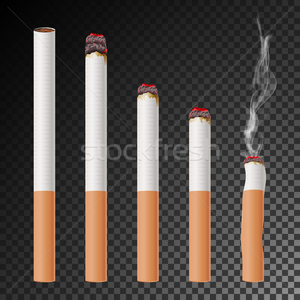 Cigarette Set Vector. Realistic Cigarette Butt. Different Stages Of Burn. Isolated Illustration. Bur Stock photo © pikepicture