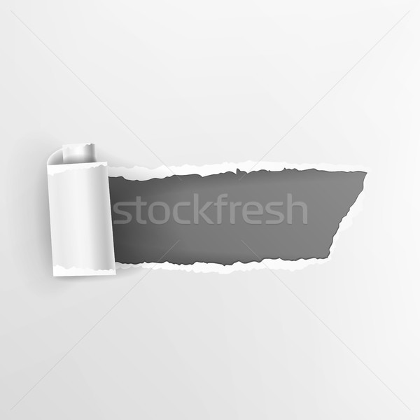 Torn Paper With Curls Vector. Realistic Hole In Paper Isolated. Element For Your Design. Stock photo © pikepicture