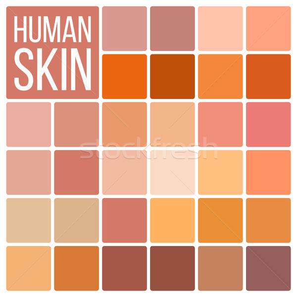 Human Skin Vector. Various Body Tones Chart. Realistic Texture Palette. Color. Cosmetic Graphic Elem Stock photo © pikepicture