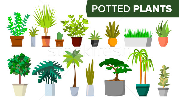Potted Plants Set Vector. Indoor Home, Office Modern Style Houseplants. Green Color Plants In Pot. V Stock photo © pikepicture