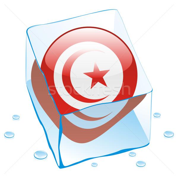 Tunísia botão bandeira congelada ice cube Foto stock © PilgrimArtworks