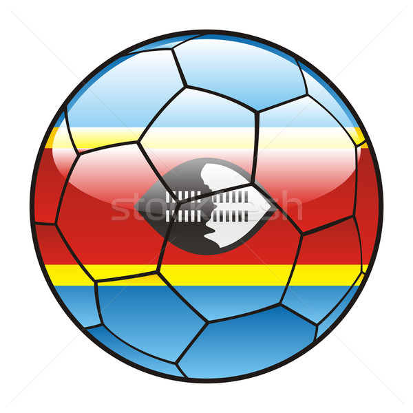 Swaziland flag on soccer ball Stock photo © PilgrimArtworks