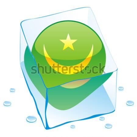 Pakisztán gomb zászló fagyott jégkocka szerkeszthető Stock fotó © PilgrimArtworks