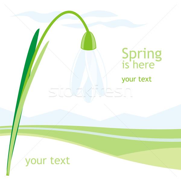 Primavera tarjeta vector árbol resumen diseno Foto stock © PilgrimArtworks