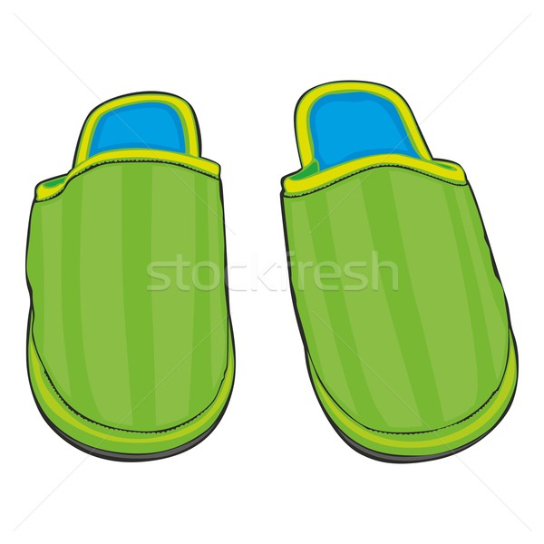 Home slippers illustratie mannen voet Stockfoto © PilgrimArtworks