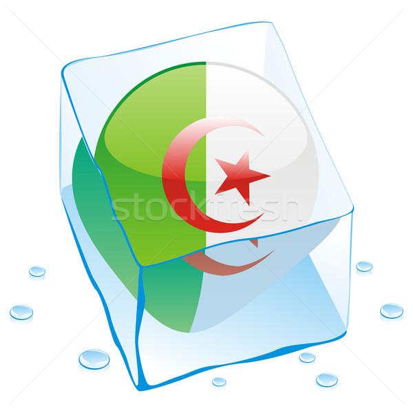 Algérie bouton pavillon congelés glaçon Photo stock © PilgrimArtworks