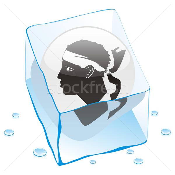 Korzika gomb zászló fagyott jégkocka szerkeszthető Stock fotó © PilgrimArtworks