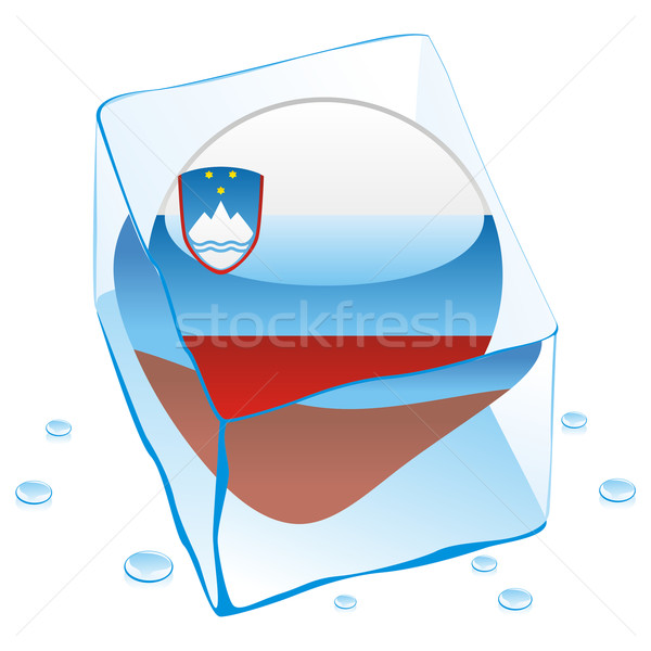 Szlovénia gomb zászló fagyott jégkocka szerkeszthető Stock fotó © PilgrimArtworks