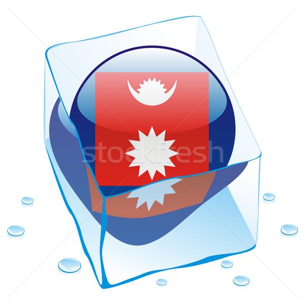 Nepál gomb zászló fagyott jégkocka szerkeszthető Stock fotó © PilgrimArtworks