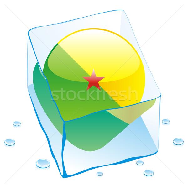 Francês botão bandeira congelada ice cube Foto stock © PilgrimArtworks
