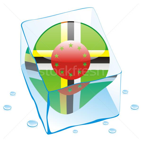 Доминика кнопки флаг заморожены Ice Cube Сток-фото © PilgrimArtworks