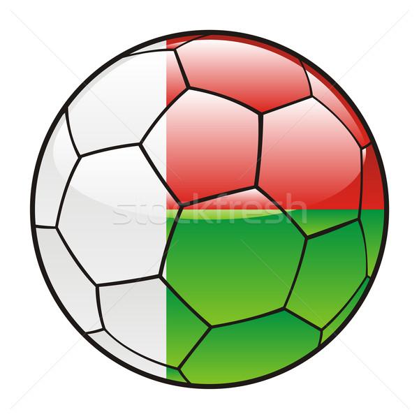 Madagaszkár zászló futballabda futball sport futball Stock fotó © PilgrimArtworks