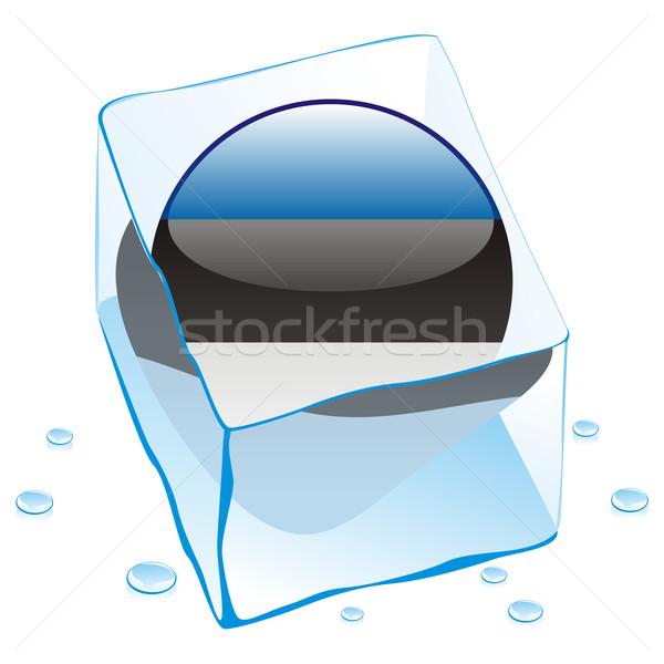 Estônia botão bandeira congelada ice cube Foto stock © PilgrimArtworks