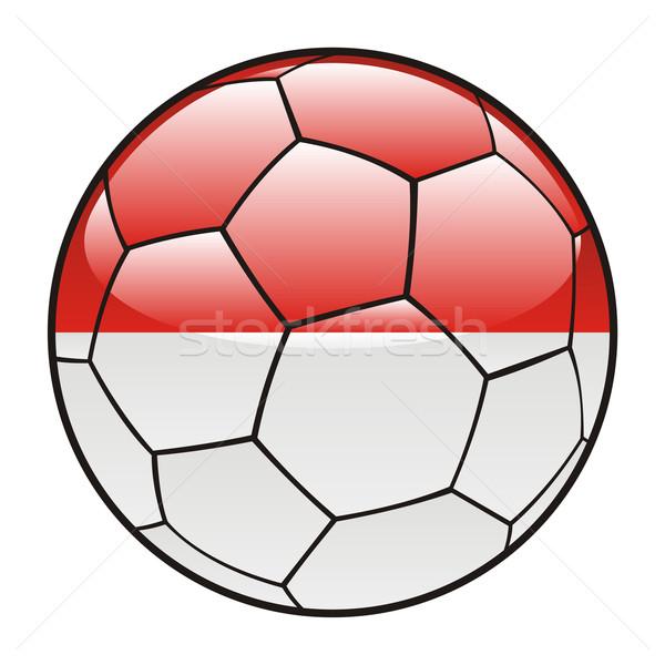 Монако флаг футбольным мячом спорт футбола Сток-фото © PilgrimArtworks