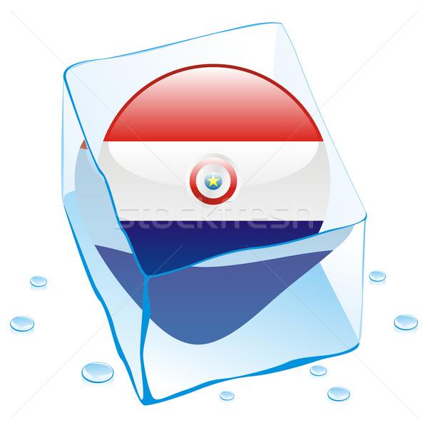 Paragwaj przycisk banderą zamrożone kostkę lodu Zdjęcia stock © PilgrimArtworks