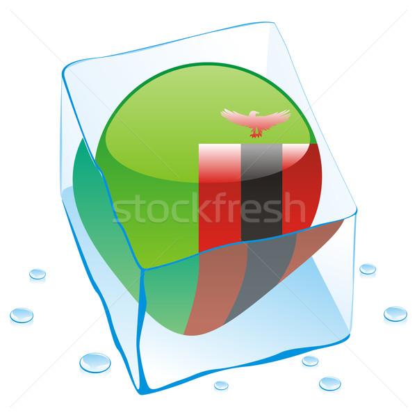 Zâmbia botão bandeira congelada ice cube Foto stock © PilgrimArtworks