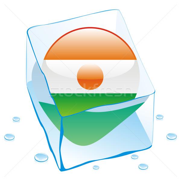 Нигер кнопки флаг заморожены Ice Cube Сток-фото © PilgrimArtworks
