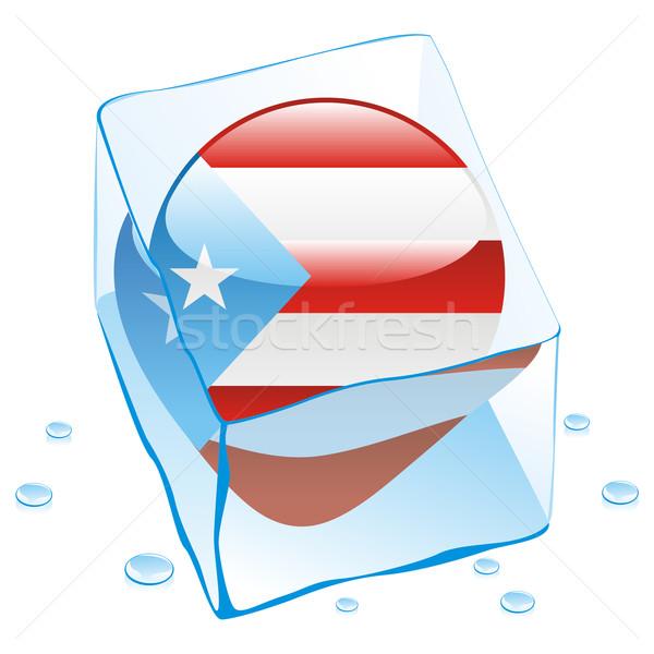 Puerto Rico knop vlag bevroren Ice Cube Stockfoto © PilgrimArtworks