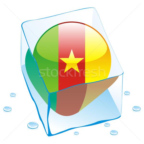 Camarões botão bandeira congelada ice cube Foto stock © PilgrimArtworks