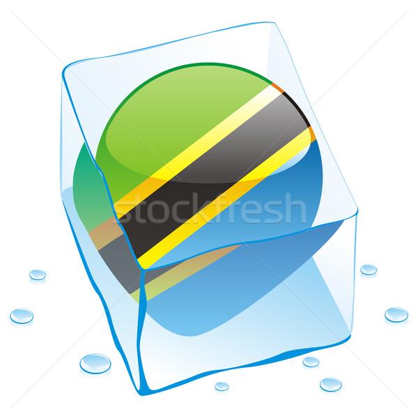 Tanzania knop vlag bevroren Ice Cube Stockfoto © PilgrimArtworks