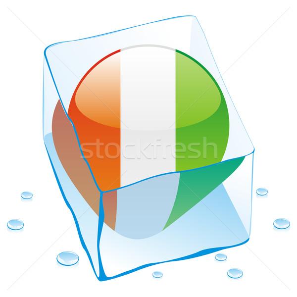 Elefántcsontpart gomb zászló fagyott jégkocka szerkeszthető Stock fotó © PilgrimArtworks