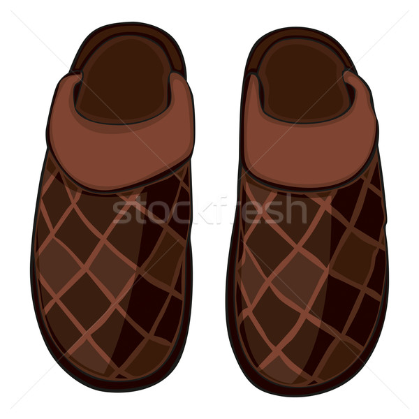 home slippers Stock photo © PilgrimArtworks
