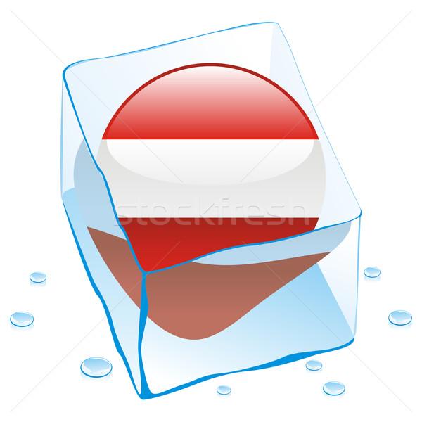 Австрия кнопки флаг заморожены Ice Cube Сток-фото © PilgrimArtworks