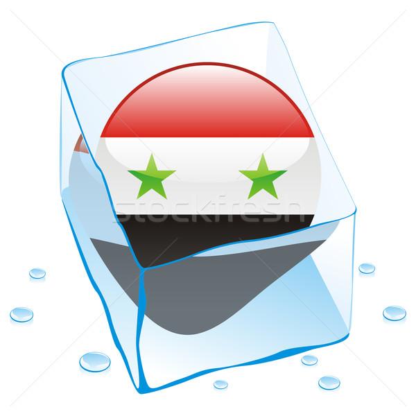 Síria botão bandeira congelada ice cube Foto stock © PilgrimArtworks