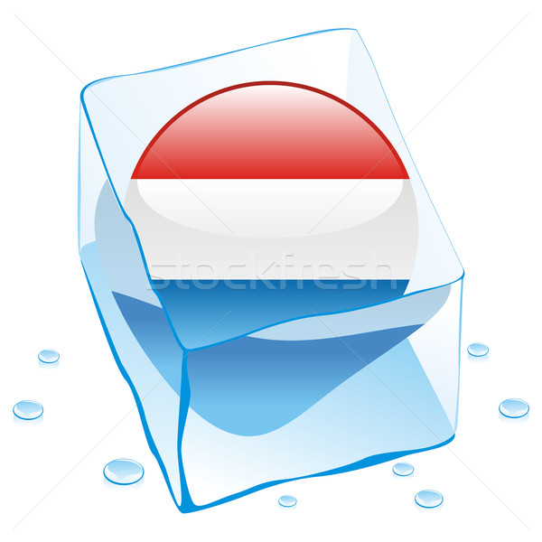 luxembourg button flag frozen in ice cube Stock photo © PilgrimArtworks