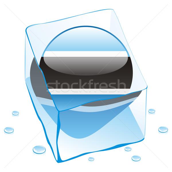 Botswana przycisk banderą zamrożone kostkę lodu Zdjęcia stock © PilgrimArtworks