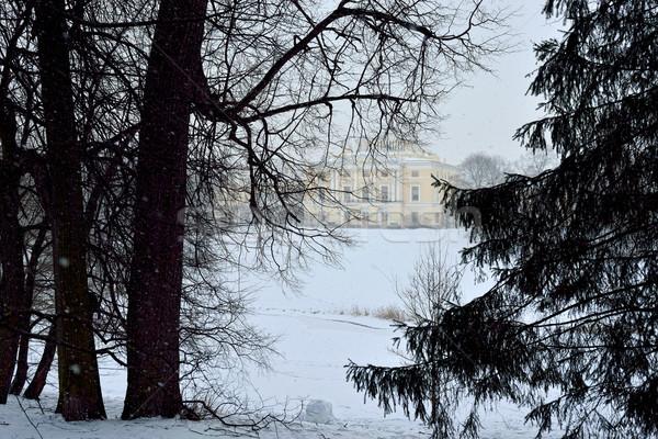 冬 風景 庭園 宮殿 ロシア 表示 ストックフォト © Pilgrimego