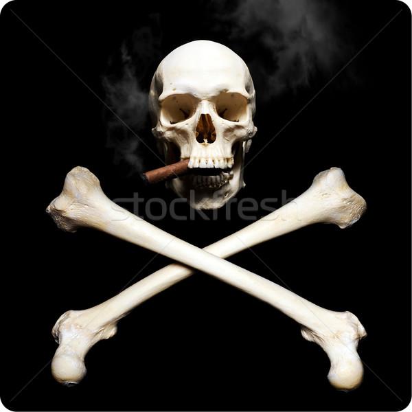 Smoking skull Stock photo © Pilgrimego