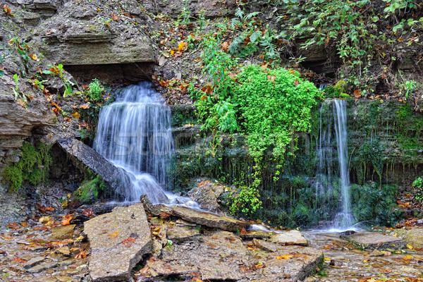 Sacred Slovenian twelve springs in Izborsk, Stock photo © Pilgrimego