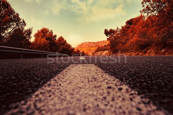 Nyár vidéki táj út Spanyolország kilátás pont Stock fotó © Pilgrimego