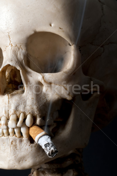 Smoking scull Stock photo © Pilgrimego