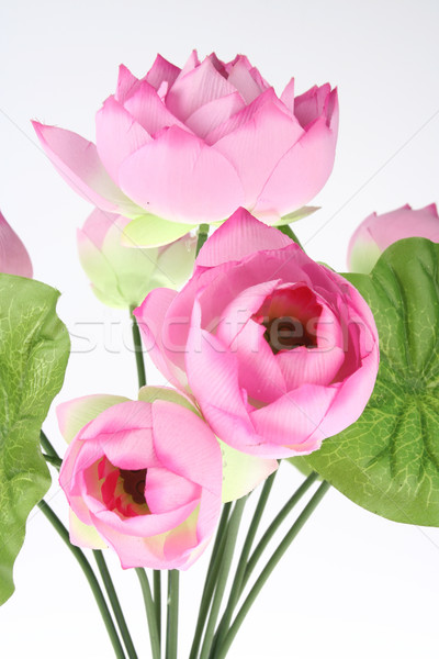 Yapay pembe lotus vazo doğa cam Stok fotoğraf © pinkblue