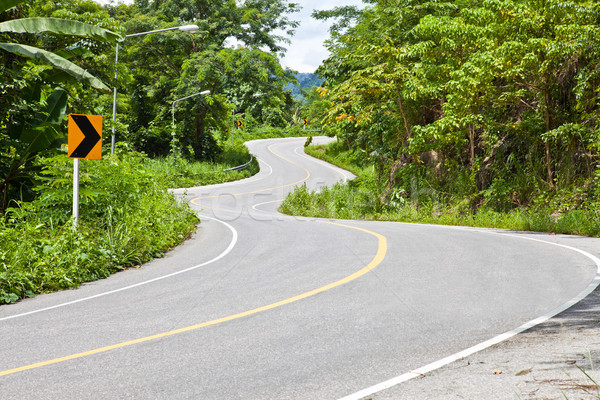 Eğri yol araba ağaç orman doğa Stok fotoğraf © pinkblue