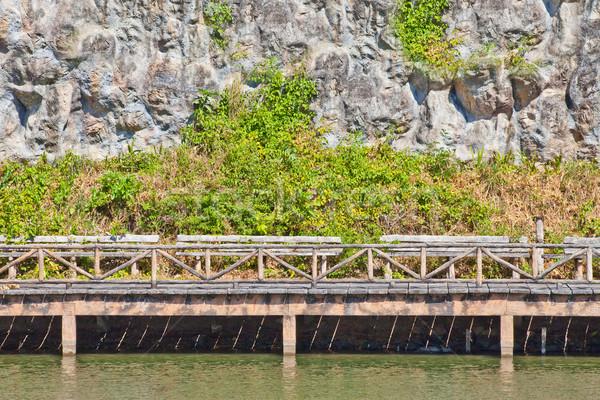 моста парка воды весны древесины Сток-фото © pinkblue